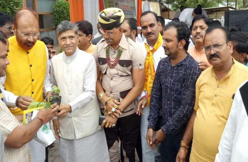 अहमदाबाद व गांधीनगर में तुलसी के 51 हजार पौधे वितरित