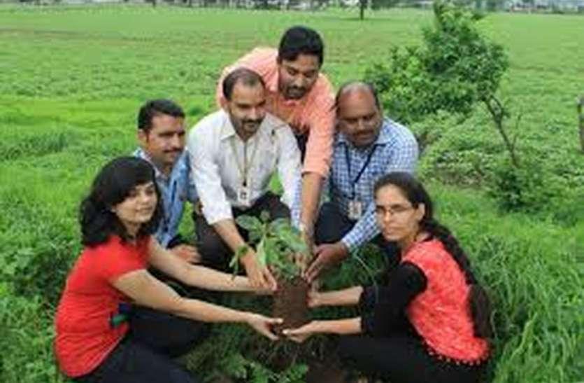 इन लोगों ने लिया जागरूकता का जिम्मा: पौधरोपण के लिए उठे हाथ