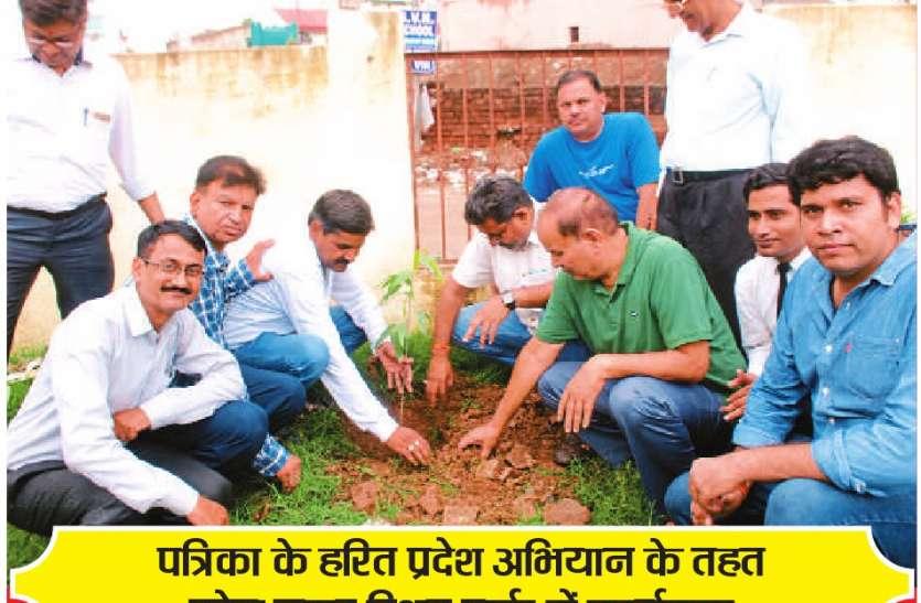 पौधा लगाने के साथ लिया संरक्षण का संकल्प