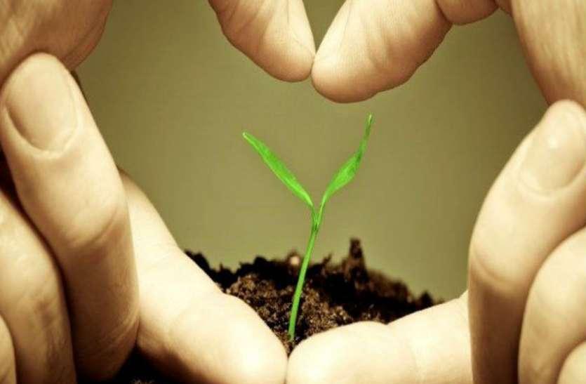 """जानिए कौन सा पौधा होगा आपके लिए """"लकी"""", तरक्की और समृद्धि के लिए इस मानसून लगायें अपनी राशि के हिसाब से ये पौधे"""