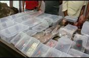 असलहा फैक्ट्री में छापेमारी, भारी मात्रा में असलहों के साथ, 14 गिरफ्तार