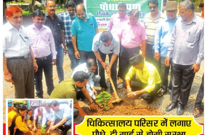 पौधों के संरक्षण के लिए बनी रणनीति
