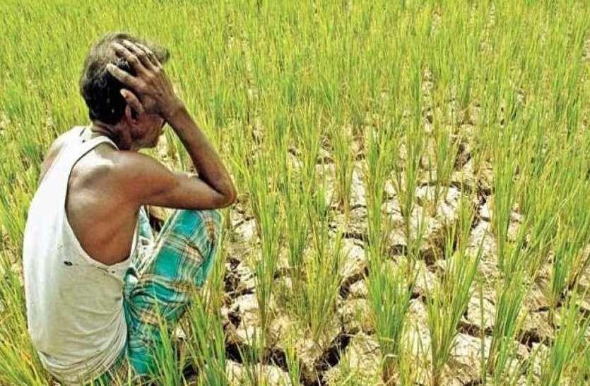 Rajasthan Farm Loan Waiver Scam