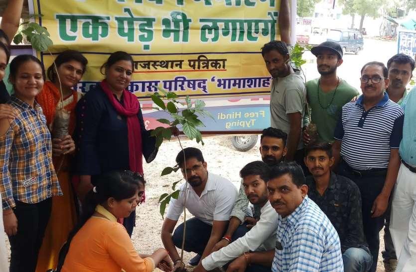 हरियाली पर 'नाज, पौधरोपण का आगाज