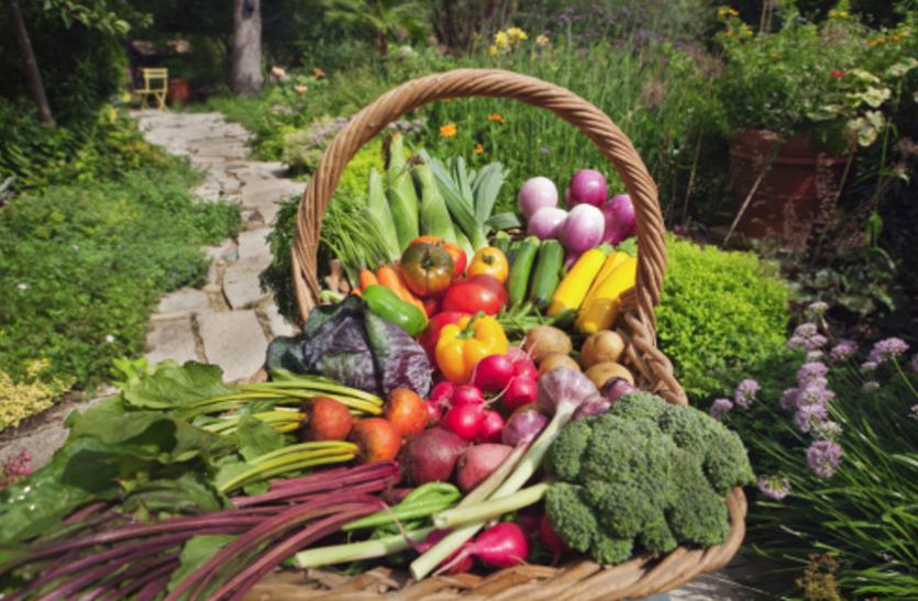 अलग-अलग तरीके से फायदा पहुंचाते हैं रंग बिरंगे फल व सब्जियां