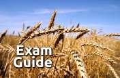 Exam Guide: इस ऑनलाइन टेस्ट से चेक करें अपने Competition एग्जाम की तैयारी