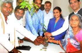 national lok adalat : अदालत ने माफ किए 1 लाख रुपए, आरोपी के सामने रखी 50 पेड़ लगाने की  शर्त
