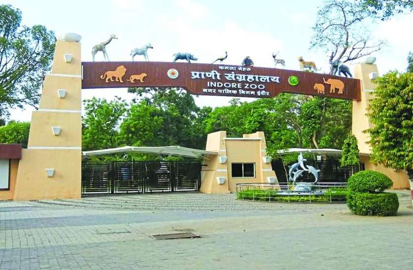चिडिय़ाघर में जानवरों और पक्षियों को देखना हुआ मंहगा