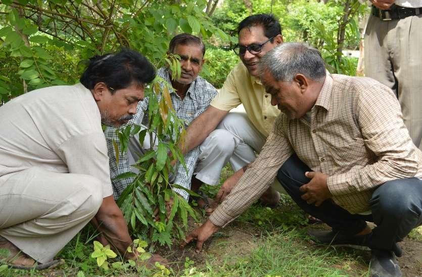 patrika Harit Pradesh campaign