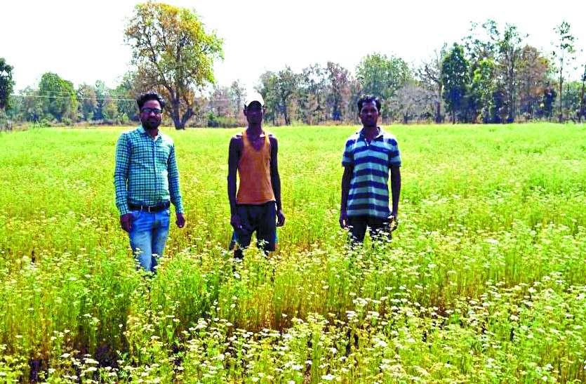 success story of Farmer