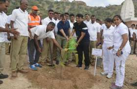 Plantation: हरियालो राजस्थान अभियान इस बटालियन में रोपे जा चुके है 11 हजार से ज्यादा पौधे