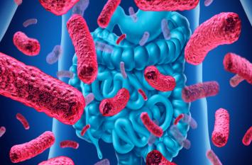 Probiotic Bacteria: सेहत का सुरक्षा कवच है प्रोबायोटिक, जानें इनके बारे में