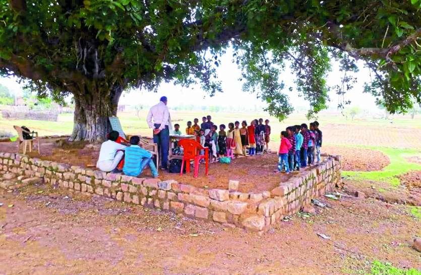 बिरसिंहपुर का एक स्कूल ऐसा भी, जहां बरगद के पेड़ के नीचे लगती है कक्षाएं