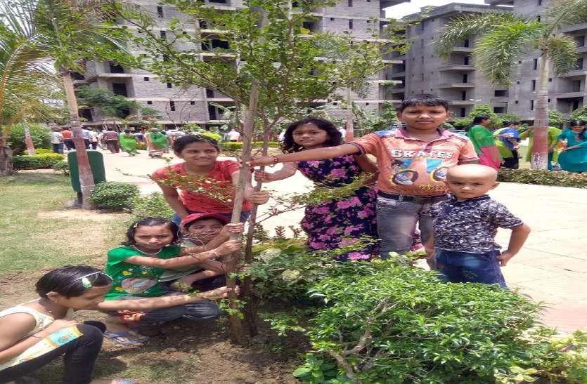 फोटो गैलरी:  धरती के श्रृंगार में जुटे शहरवासी, रोपे एक हजार पौधे