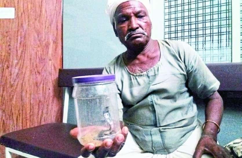 पैर में लिपटा कोबरा तो सांप को डिब्बे में बंद कर जिला अस्पताल ले आए