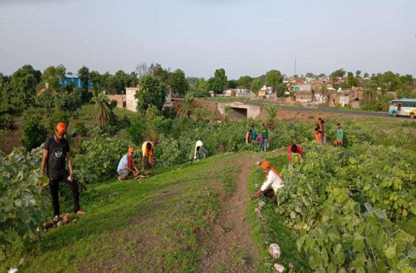 पौधरोपण कर युवाओं ने दिया पर्यावरण संरक्षण का संदेश