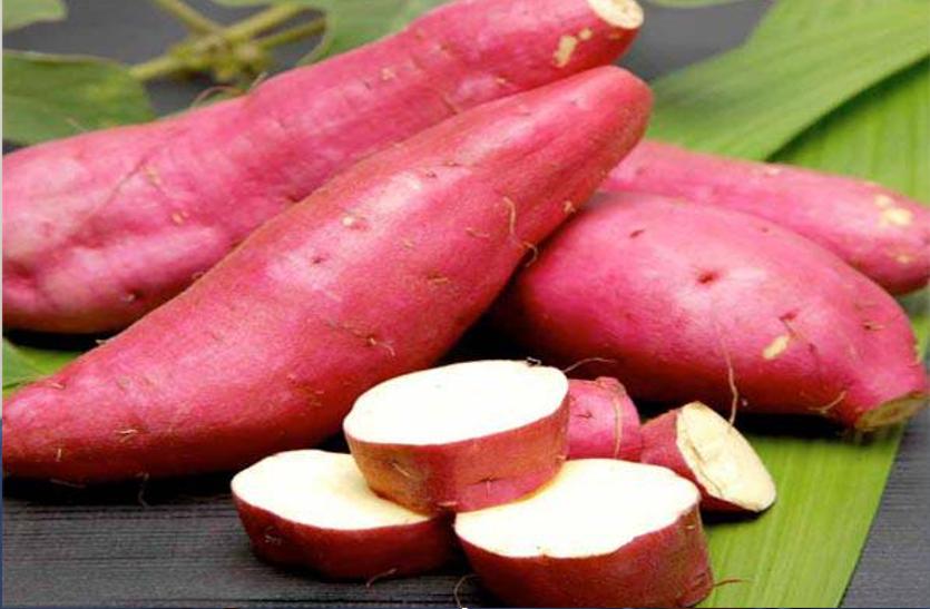Sweet potato: तंत्रिका तंत्र सक्रिय रखती है शकरकंद, जानें इसके अन्य फायदे