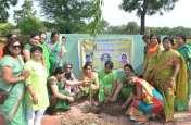 पत्रिका हरित प्रदेश अभियान : प्रकृति हरी-भरी रहे तो सभी ओर खुशहाली....