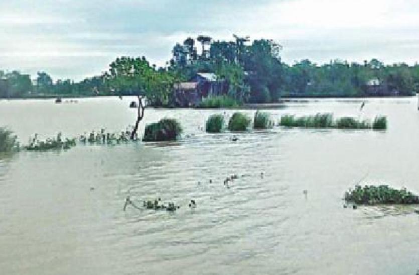 असम बाढ़: 15 मृत, 43 लाख लोग प्रभावित;  काजीरंगा पार्क जलमग्न