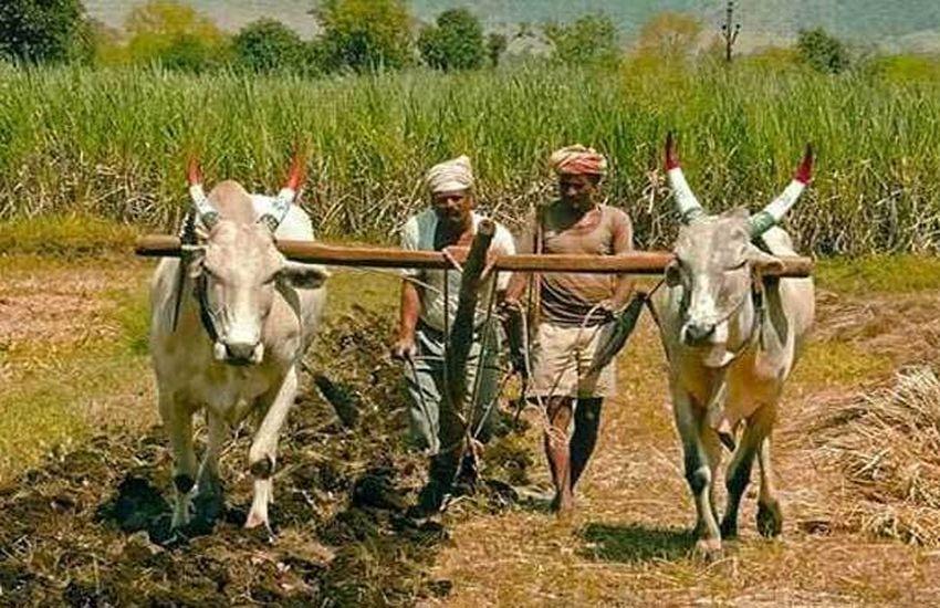 '11 हजार किसानों का 28 करोड़ का कर्जा माफ, फिर से मिलने लगा है लोन'