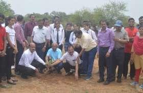 विश्वविद्यालय के सैकड़ों छात्रों ने एक साथ किया पौधरोपण, कुलपति ने कही यह बात..