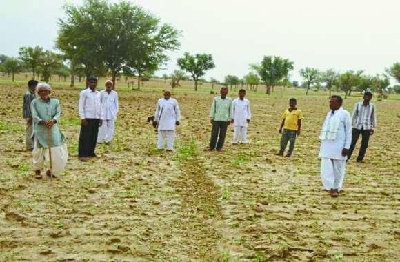 पड़ोसी देश पाक सीमा पार कर राजस्थान में आई बड़ी मुसीबत, किसानों की उड़ी नींद