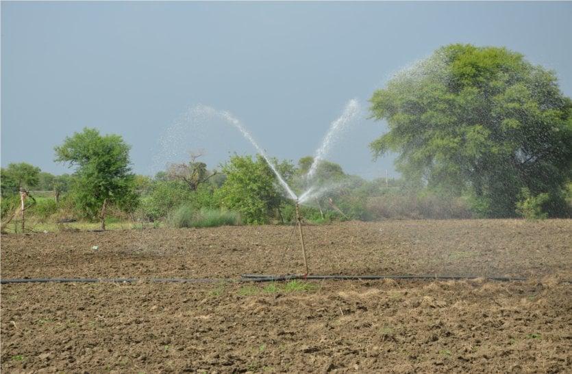 video: अभी तक हुई सिर्फ 189 एमएम बारिश, सूखने लगी फसलें, किसानों ने सिंचाई की शुरू