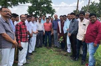 जिले में रोपित किए गए 40 हजार पौधे