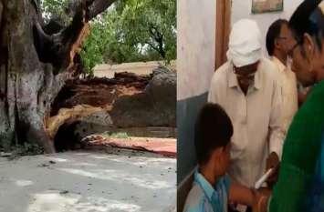 स्कूल परिसर में पढ़ाई कर रहे छात्रों पर गिरा पीपल का पेड़, छात्रा की मौत, 6 घायल