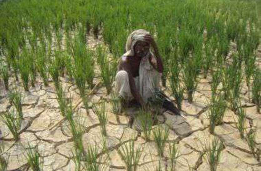 अवर्षा का असर: बारिश के इंतजार में फटने लगी जमीन, अन्नदाता परेशान
