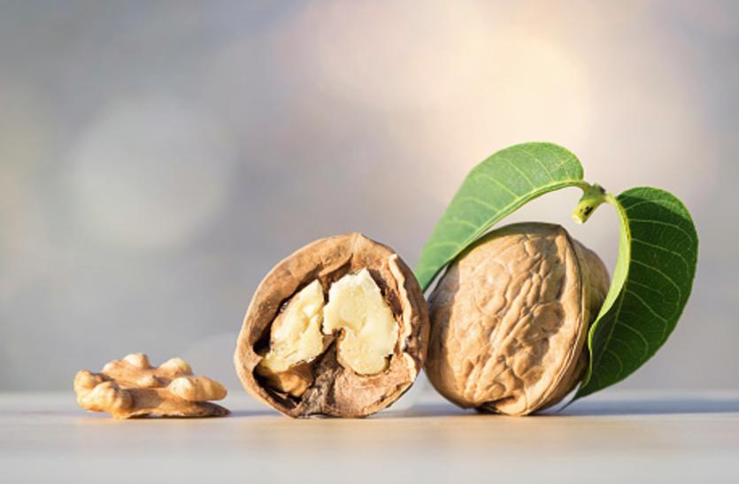 Eat Walnut Daily To Get Sharp Mind And Healthy Body - अखरोट खाएं तेज दिमाग आैर अच्छी सेहत पाएं | Patrika News