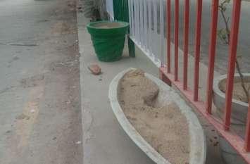 श्रीगंगानगर में खिलने से पहले दम तोड़ गए पौधे, अधिकांश गमलों के पौधे पानी नहीं मिलने से ओझल