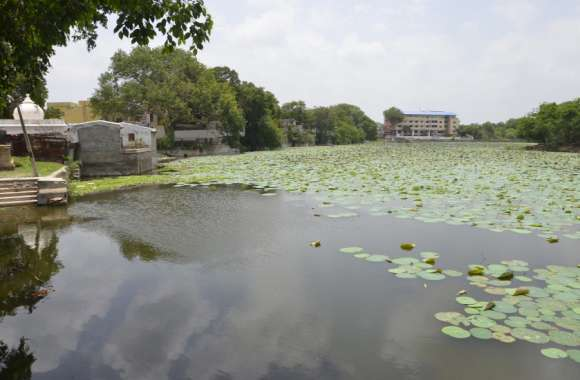 बड़ा तालाब के सीमांकन को लेकर कोर्ट में जनहित याचिका के बाद अब एनजीटी जाएंगे