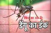 बारिश के साथ पैर पसारेगा डेंगू और चिकनगुनिया! ऐसे करें अपना बचाव