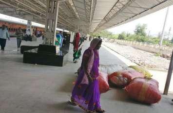 तेंदूपत्ता की अवैध तस्करी में स्टेशन प्रबंधक दो घंटे करते रहे वन अमले का इंतजार, डीएफओ ने नहीं उठाया फोन, तस्करों को डब्ल्यूटी बनाकर छोड़ा