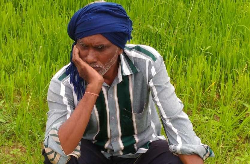 रूठे मानसून को मनाने, किसानों ने शुरू किया रामायण पाठ