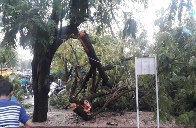 बारिश से बचने पेड़ के नीचे खड़ा था बुजुर्ग, अचानक आसमान से आई ऐसी आफत और हो गई मौत