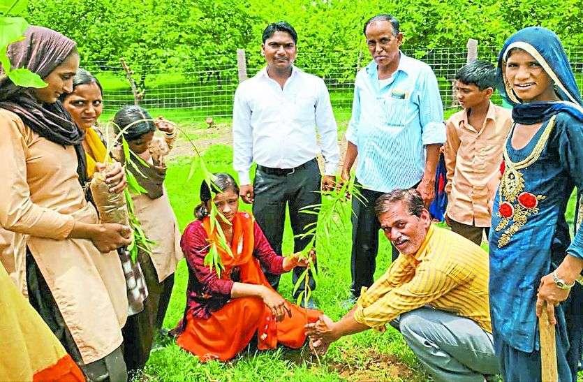 पौधे लगा लिया संरक्षण का संकल्प