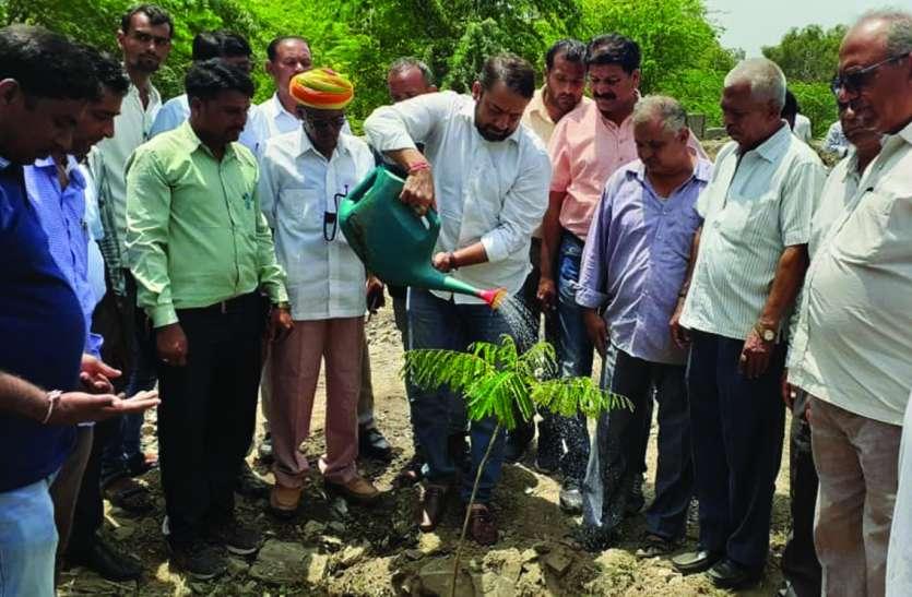 सघन पौधरोपण अभियान शुरू, पहले दिन रोपे सोलह हजार पौधे