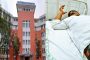 लकवा पीड़ित मरीज तरस रहा इलाज को, मुख्यमंत्री के ऑपरेशन में था हमीदिया अस्पताल बेस्ट