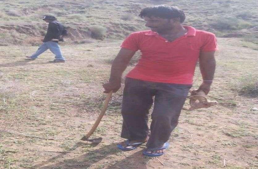 शिकारियों ने पकड़ी चार गोह, ग्रामीणों ने छुड़वाई