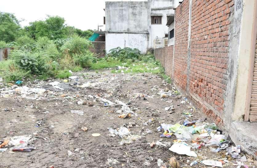 शुल्क वसूलने के बाद भी नपा इन रिक्त भूखंडों की नहीं करवा पा रही सफाई
