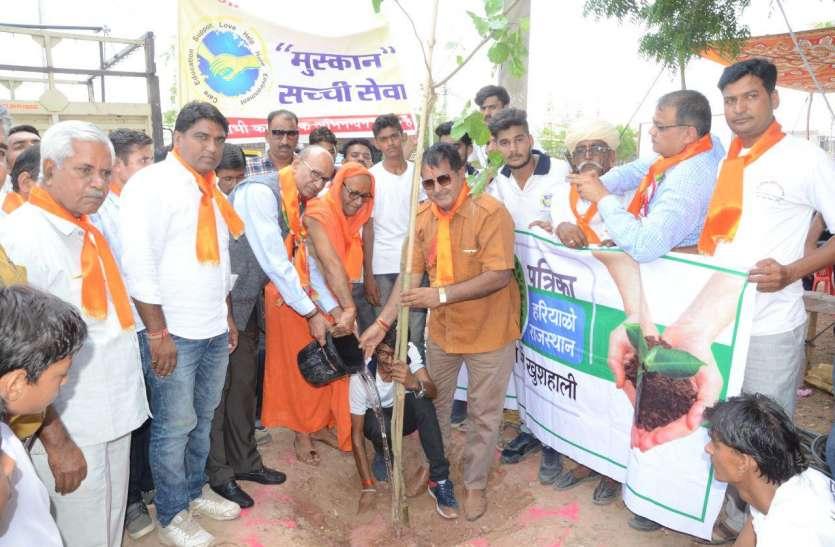 हरयाळो राजस्थान : मंडलनाथ चौराहा से तिंवरी तक सघन किया पौधरोपण