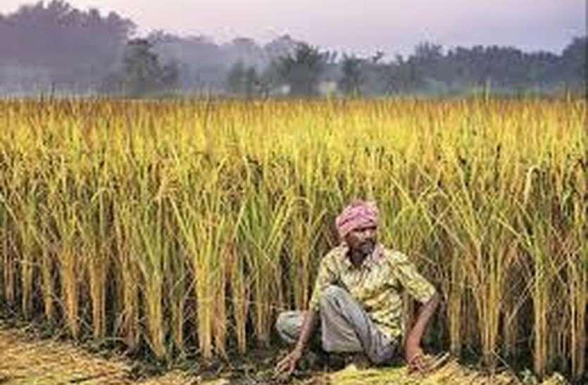 रबी फसलों पर जोखिम प्रतिशत था 90 लेकिन खरीफ में रहेगा 80