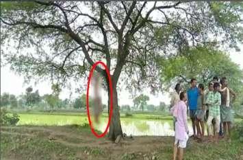 एक और किसान झूल गया फांसी के फंदे पर, बबूल के पेड़ पर लटका मिला शव