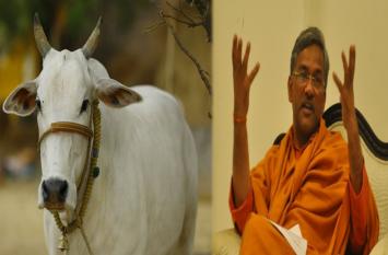 Watch Video: जब CM बोले 'गाय ही एक मात्र पशु जो छोड़ता है ऑक्सीजन'