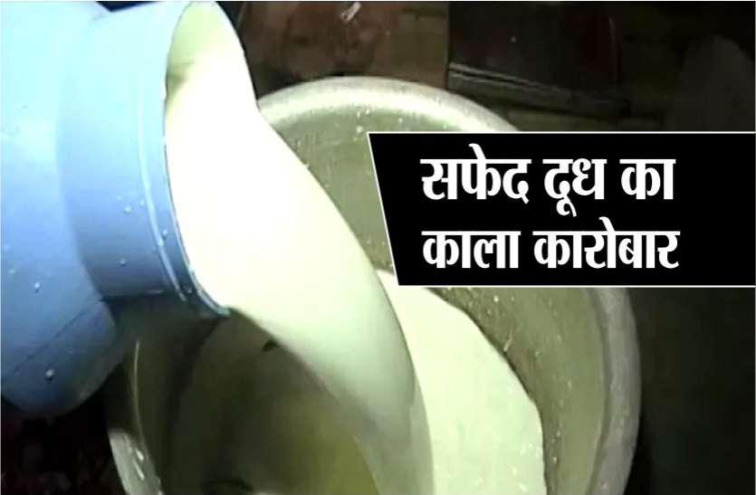 बड़ी खबर : प्रदेश में बेधडक़ बिक रहा है नकली दूध और पनीर, ऐसे करें पहचान