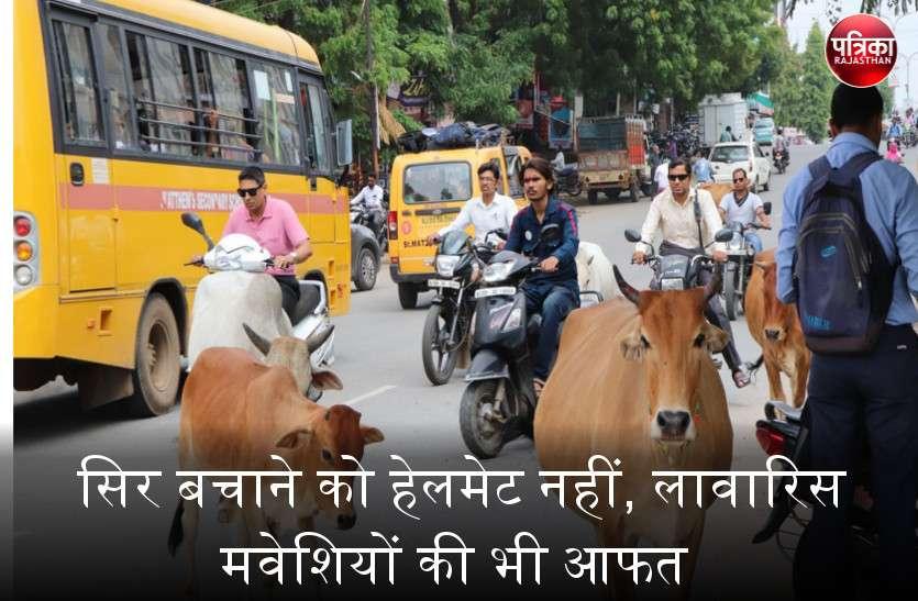 बांसवाड़ा में साहब ने किया हेलमेट अनिवार्य, लेकिन आवारा पशुओं से कैसे बचाएं जान
