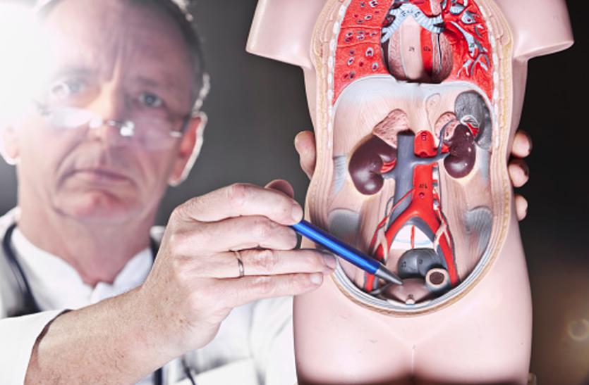 Prostate Gland - हार्मोनल बदलाव से बढ़ता ग्रंथि का आकार
