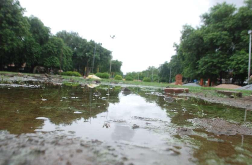 अनदेखी के कारण संवरने से पहले ही बदहाल होने लगा पार्क
